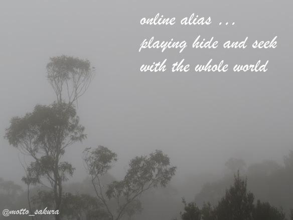 online alias - David J Kelly
