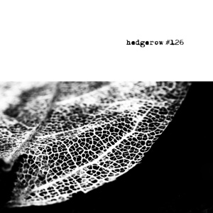 hedgerow #126 COVER front