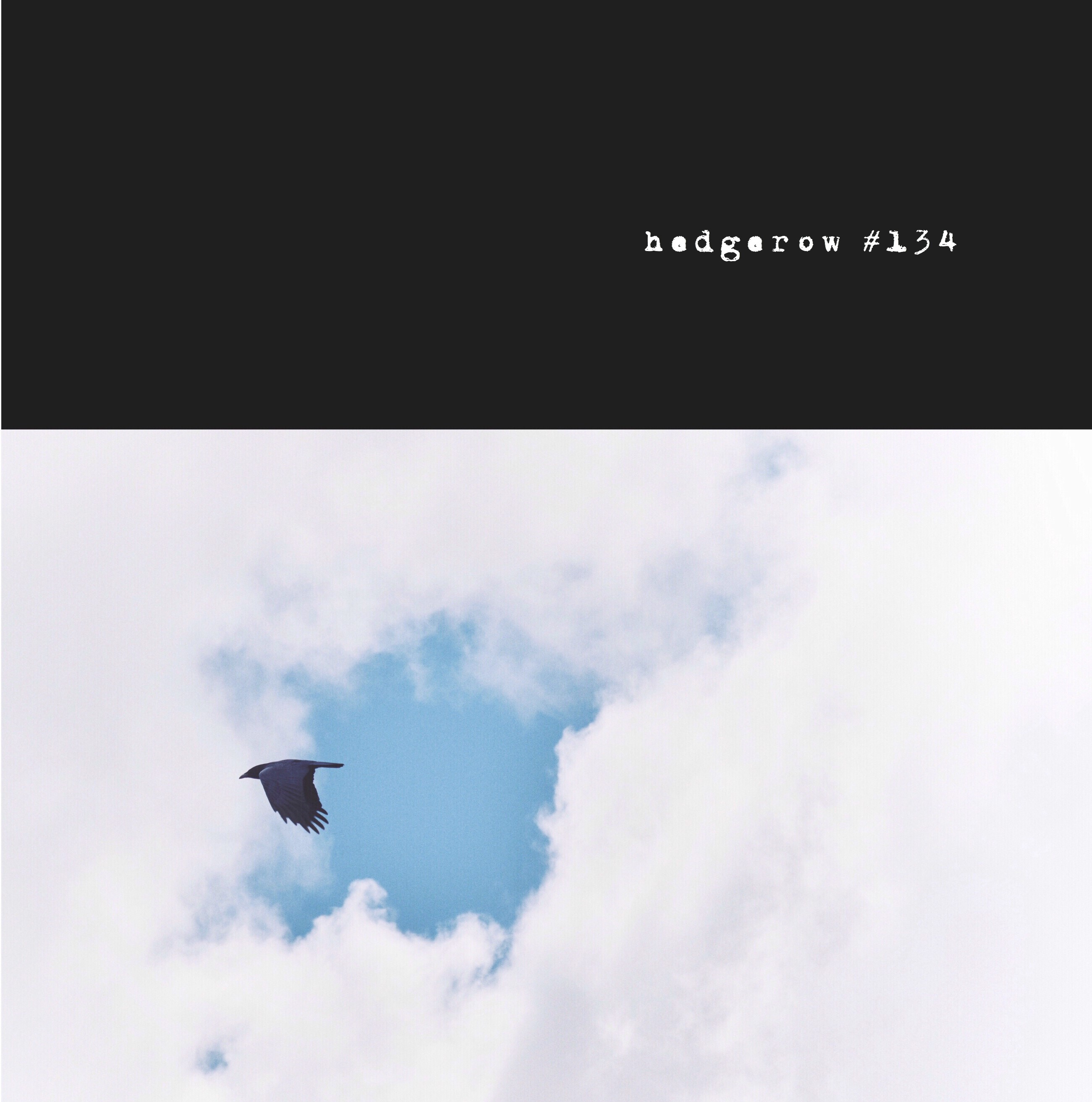 cover-134-front